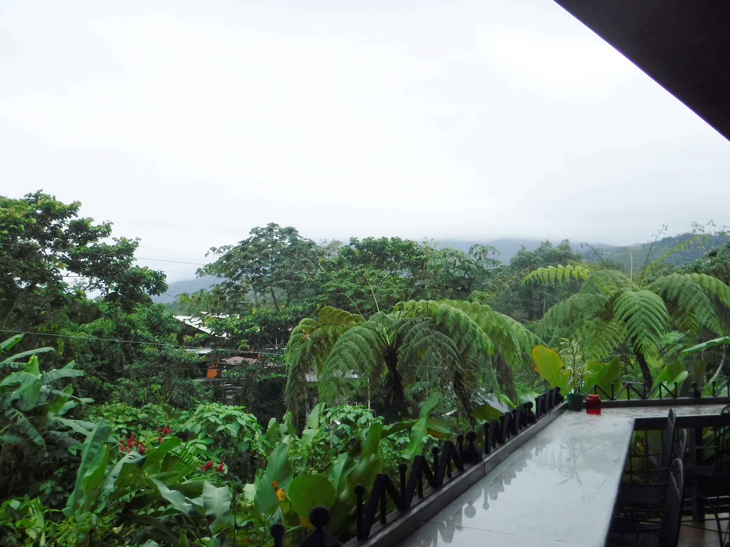 The gorgeous view from the restaurant at the Arenal Springs Resort and Spa.
