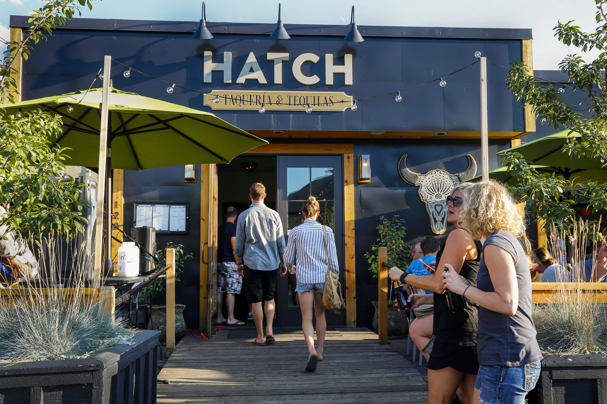 HatchSummer-142.jpg