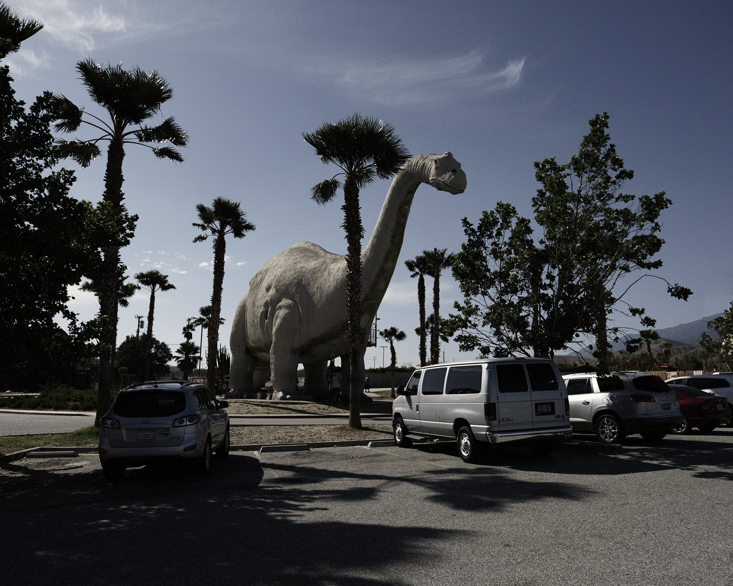dinosaur 2.jpg