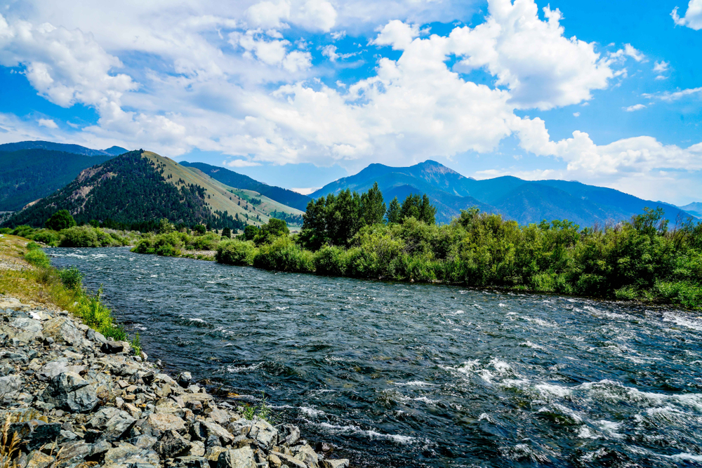 the Madison river, near yellowstone. photo: Ric Schafer/shutterstock