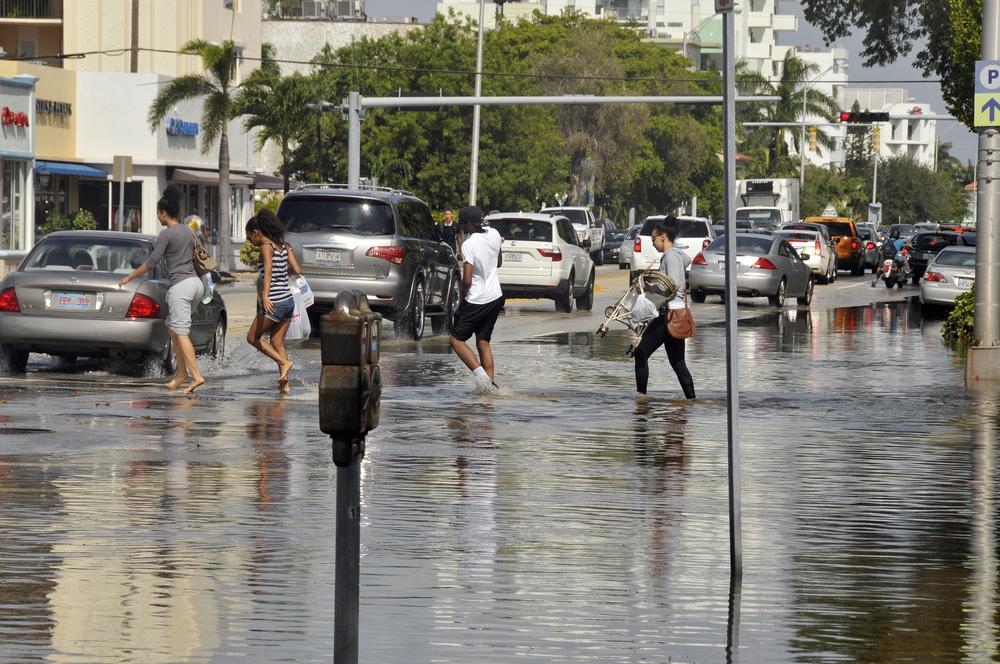 flooding in miami. meunierd/ shutterstock:
