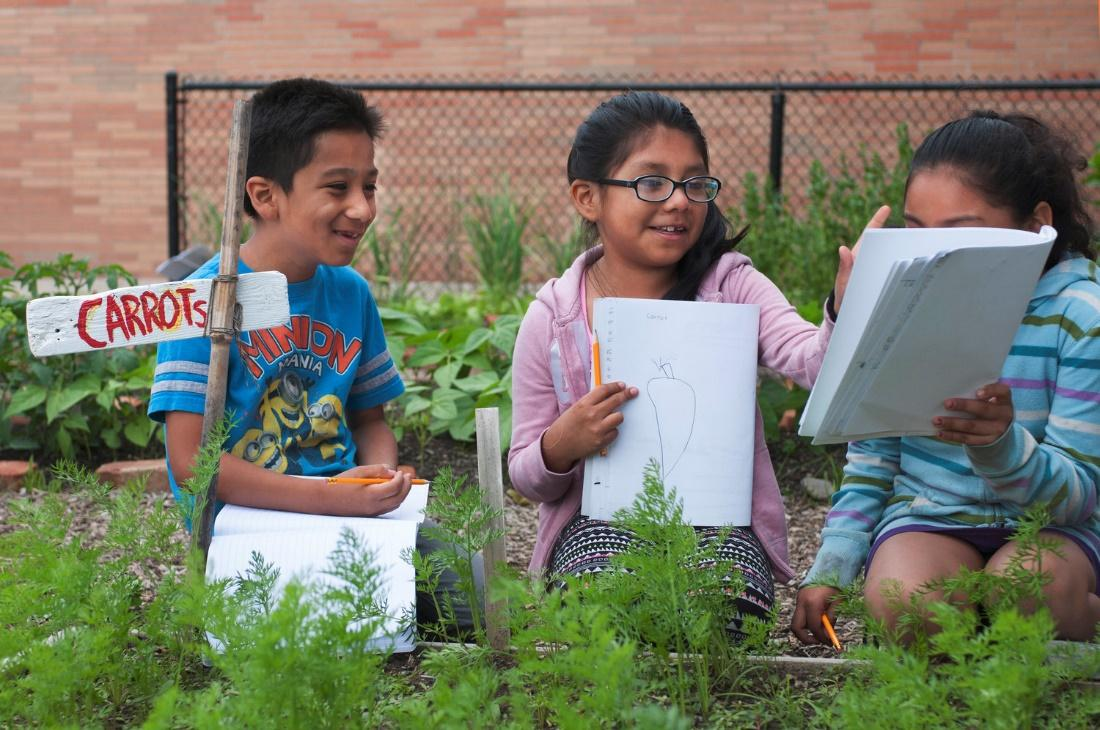 Elementary school students working in one of Hageman's Hudson Valley Seed school gardens (Credit:Hudson Valley Seed)