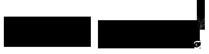TSCcropped-logo2015-horizontal.png