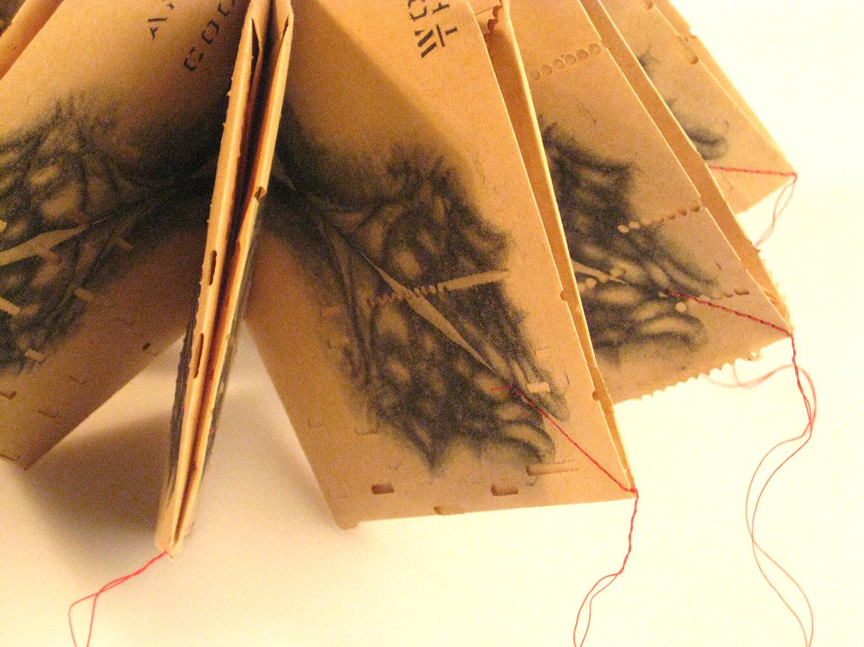 Artists-Books-Lisa-Feyen