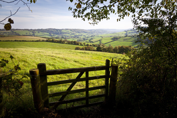 Enjoy English countryside on your hiking tour