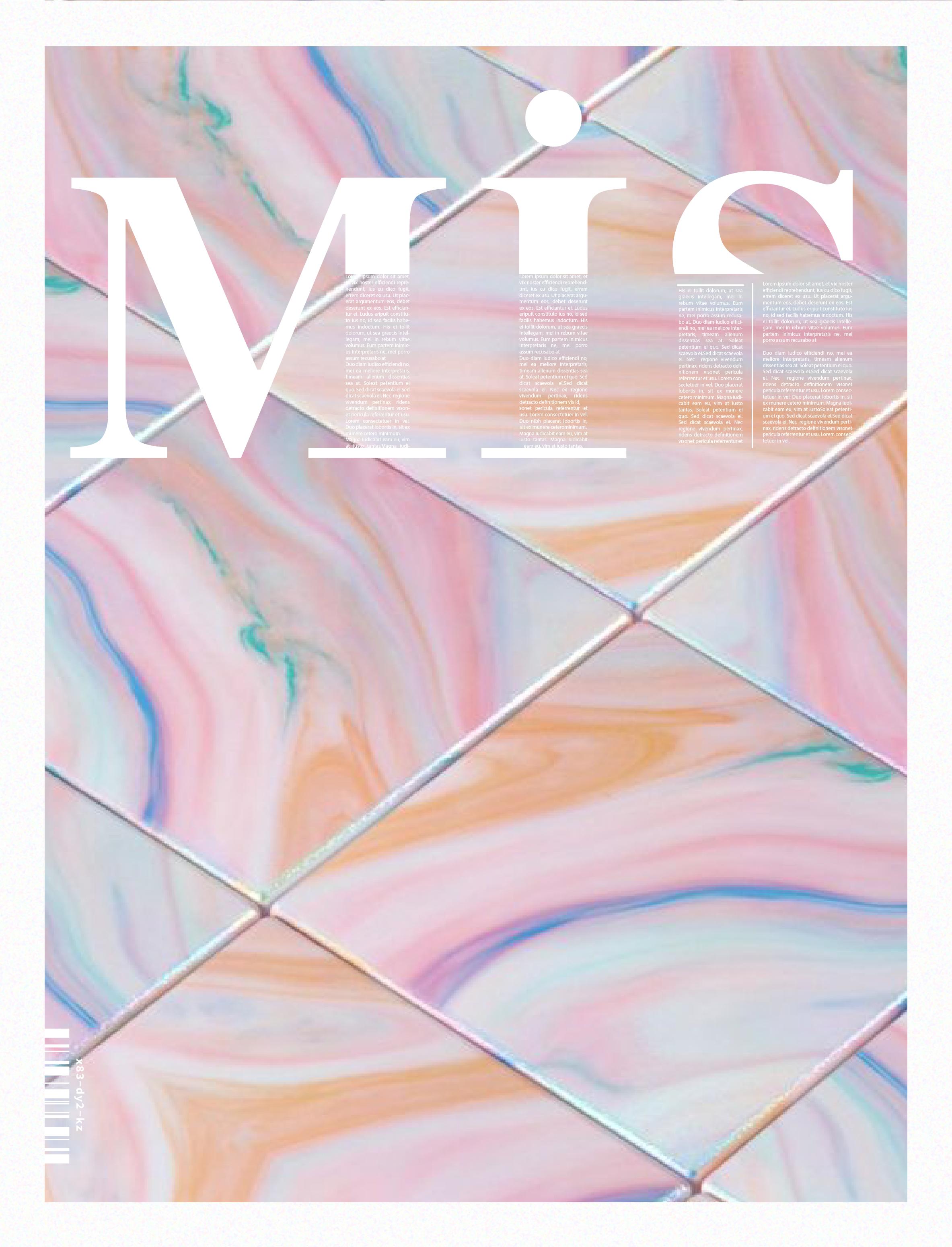 Mis Magazine Cover