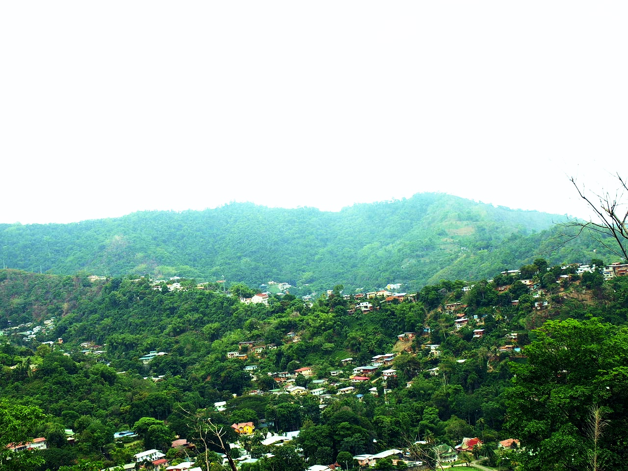 Mountain Tobago.jpg