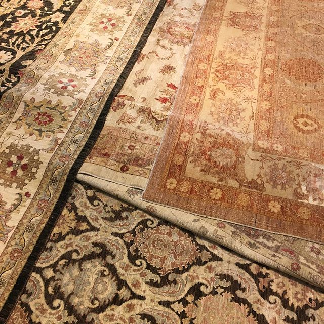 Which of these rugs is magic and will take us to the sunshine?
