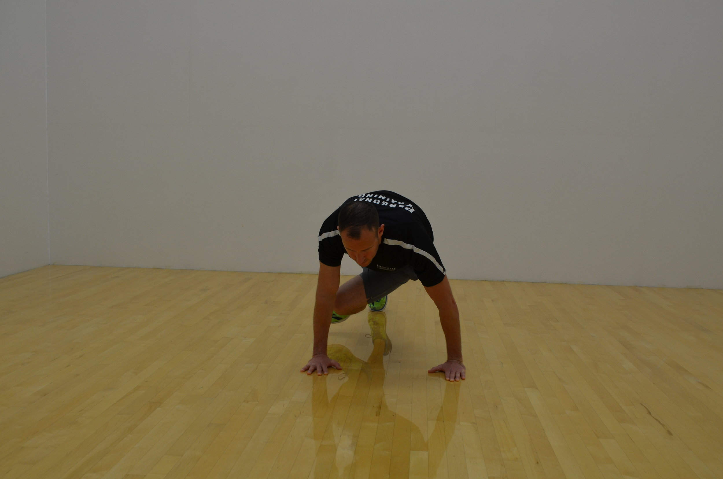 Plank with Hip Rotation