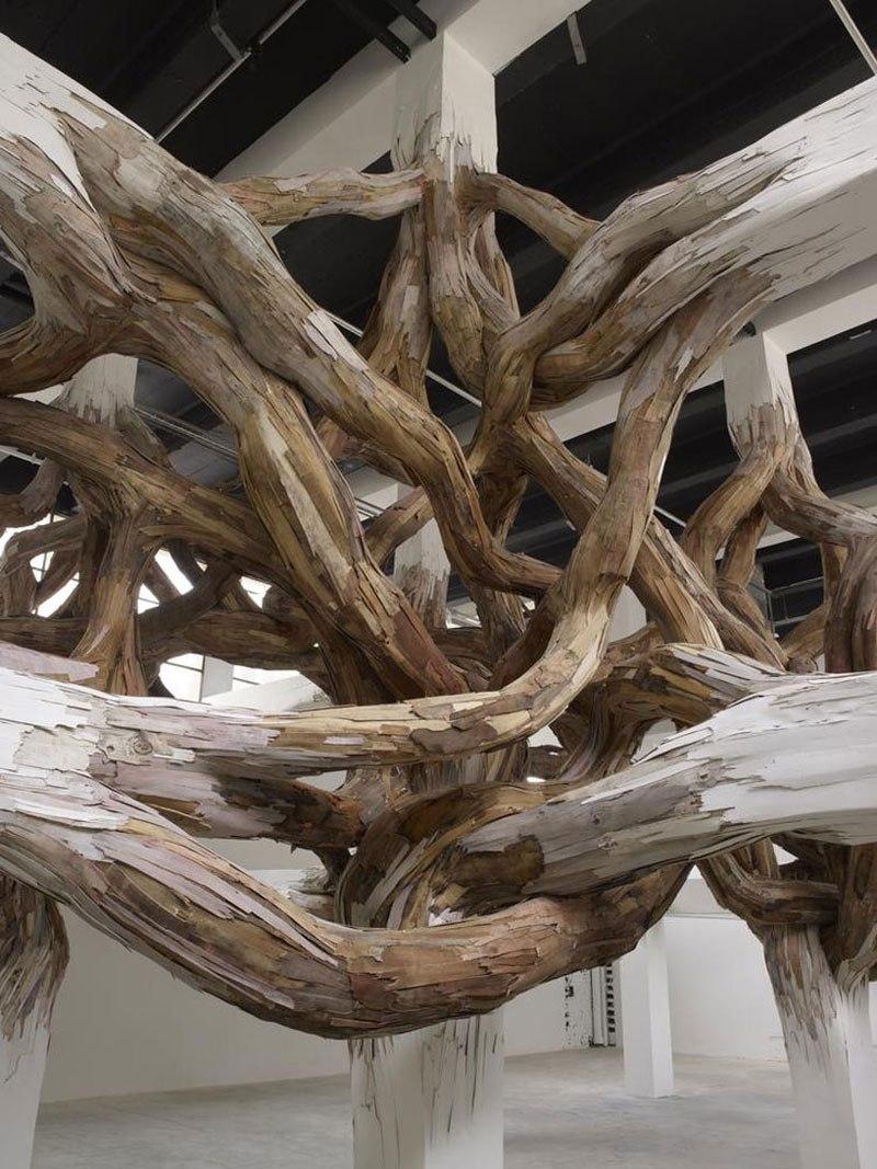 branches IV.jpg