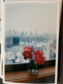 / - Flowers in the Cerulean Tower Window