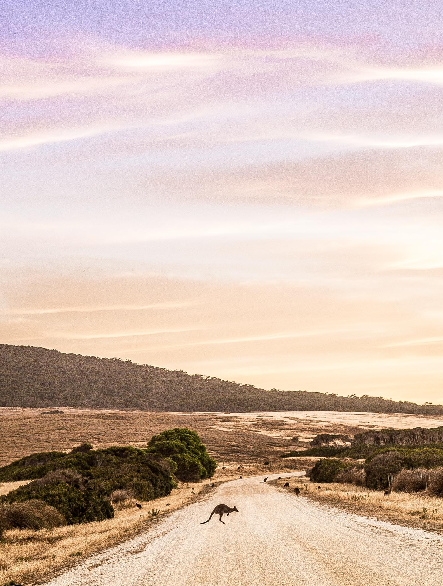 Flinders Island 3.jpg
