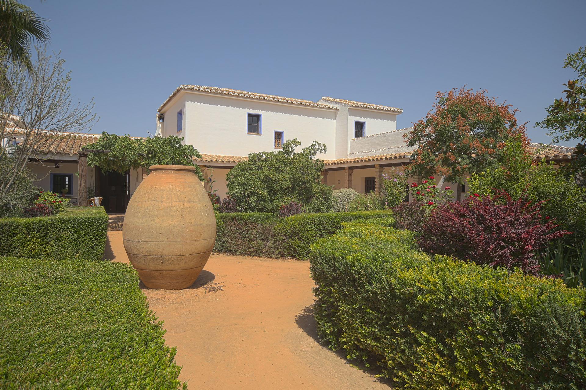 Front Garden huge terracotta pot