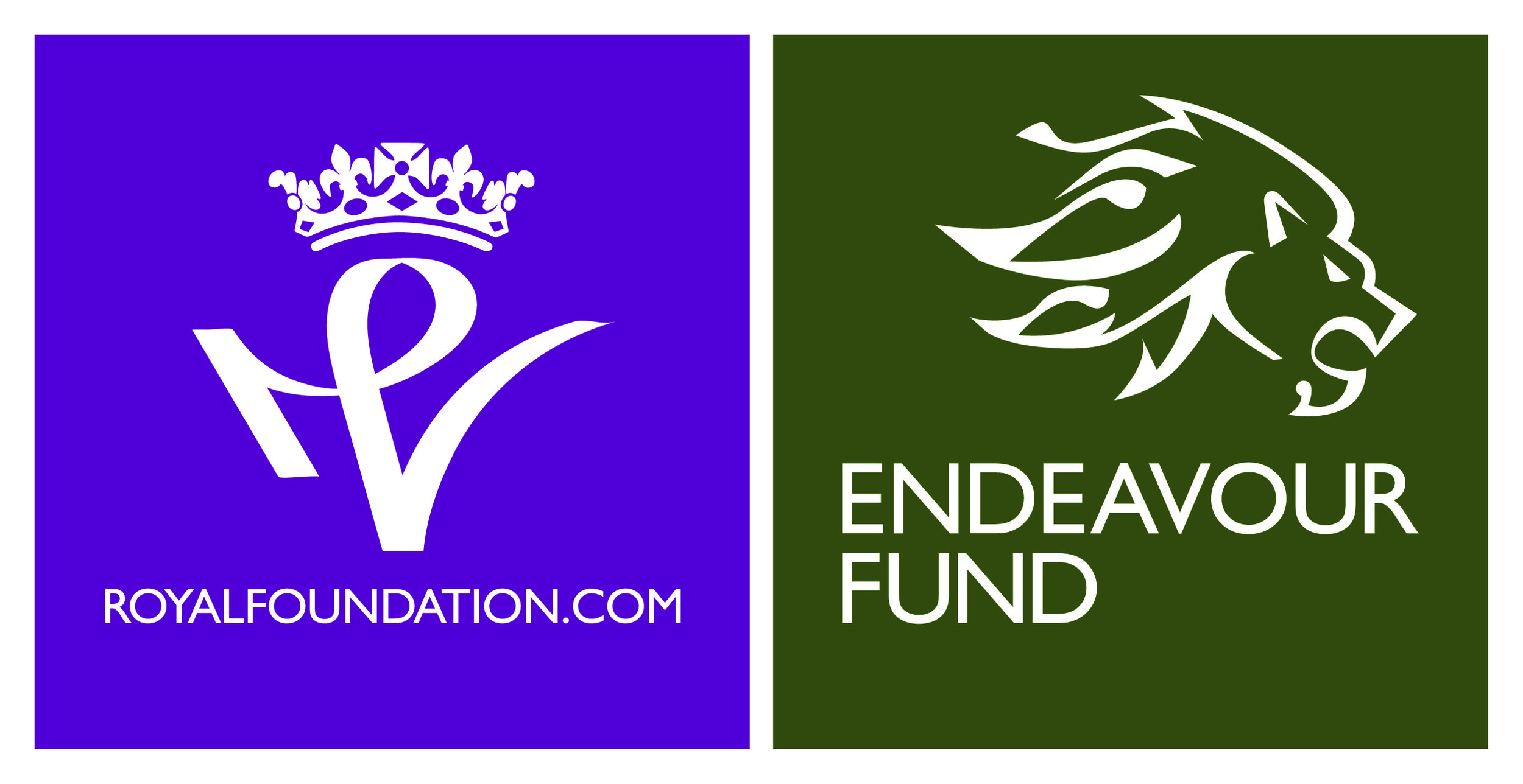Copy of Copy of endeavour fund