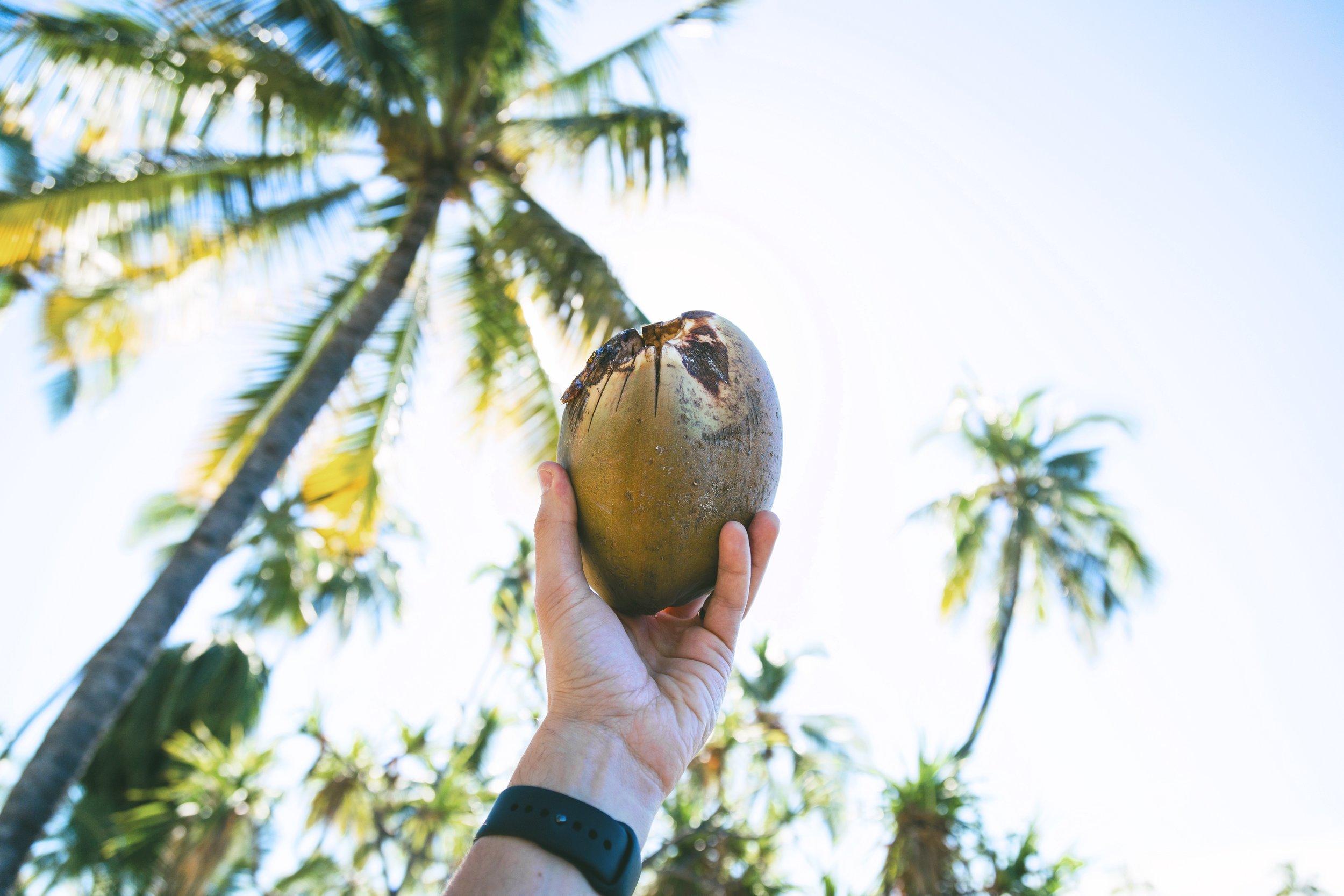 agua de coco hidratacion