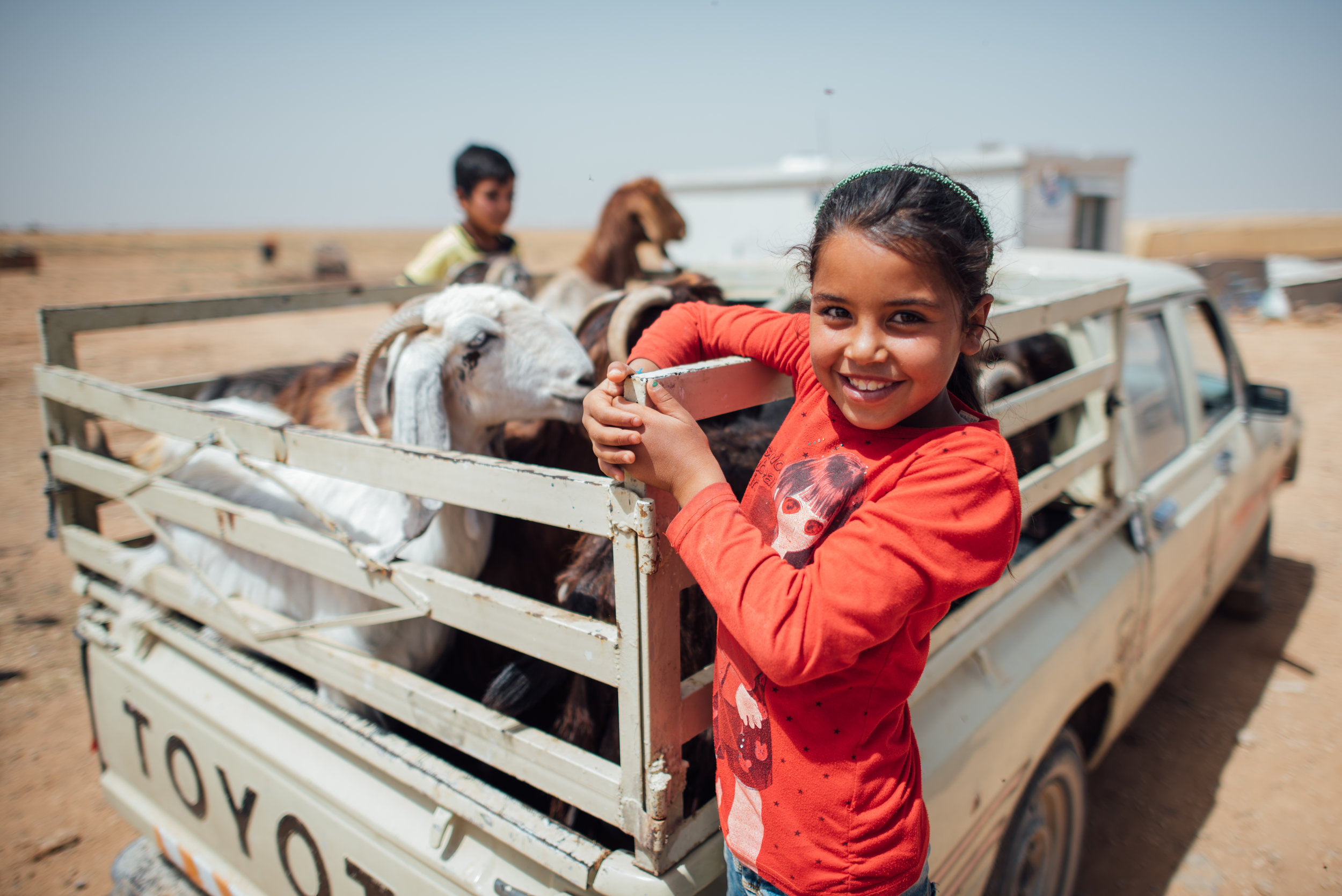 From LHI's May 2017 distribution in Jordan. Photo by Mike Walton.