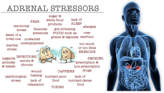 adrenal-stressors.png