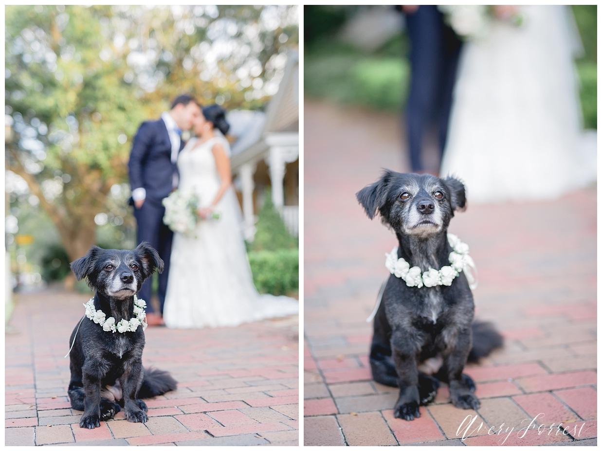 Pensacola Wedding, Palafox at the Warf, Elegant Church Wedding_0243.jpg