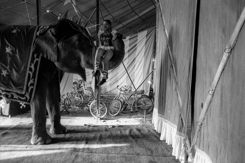 Indian_Circus_VivekM-11.jpg