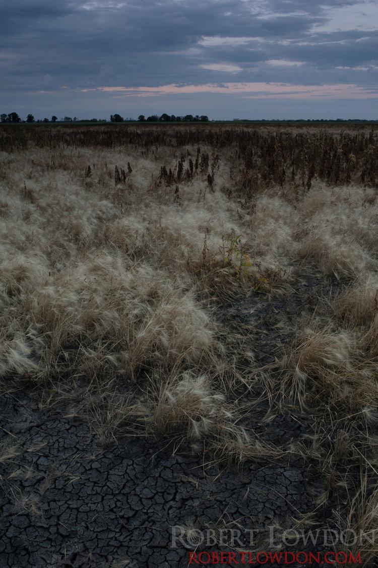 Dirt.  Landscape Photograph of southern Winnipeg.