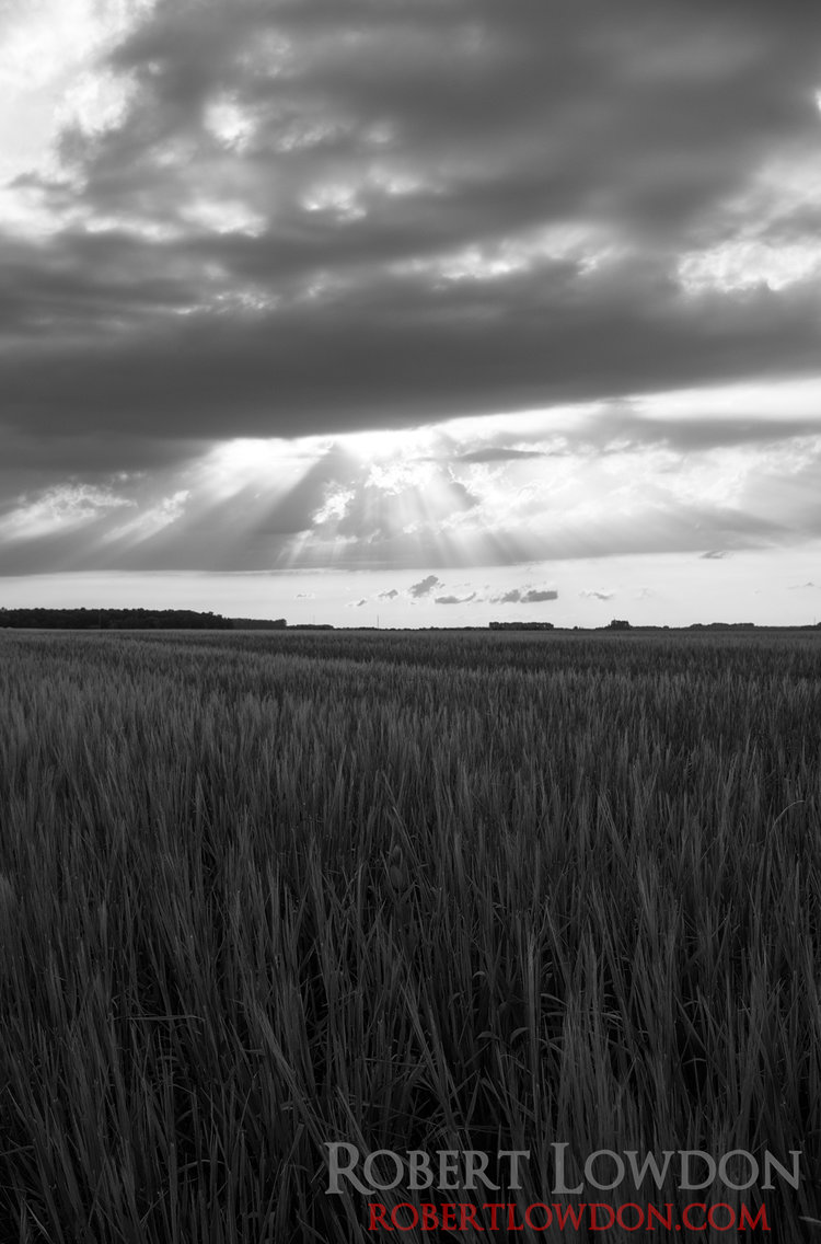 Big Sky.  The sky open over an agricultural landscape
