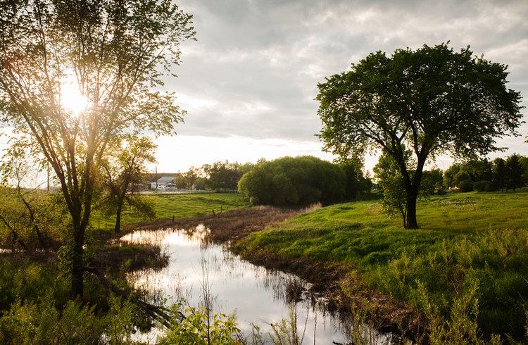 Quiet creek in the spring. Photograph taken near St. Norbert Manitoba
