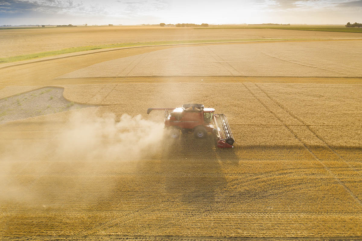 A horizontal view of a grain harvester, with the sun in the background. © Robert Lowdon