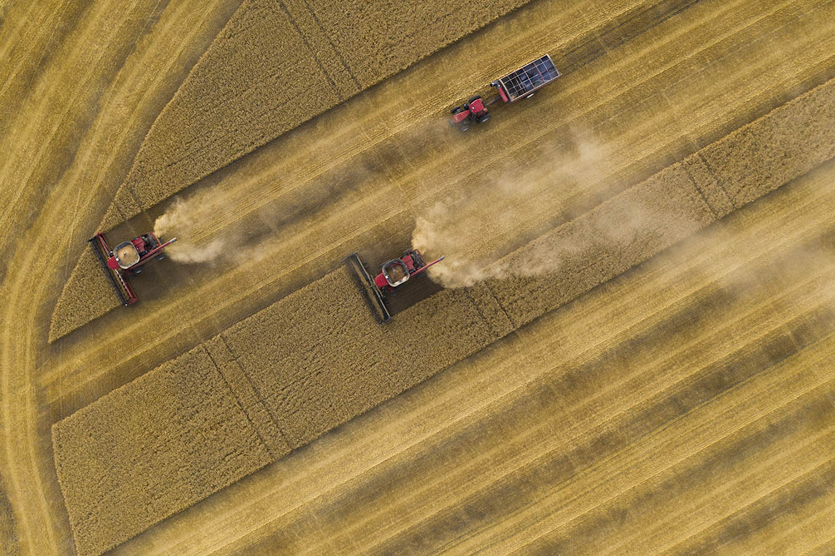 Top down view of combines and a grain trailer. © Robert Lowdon
