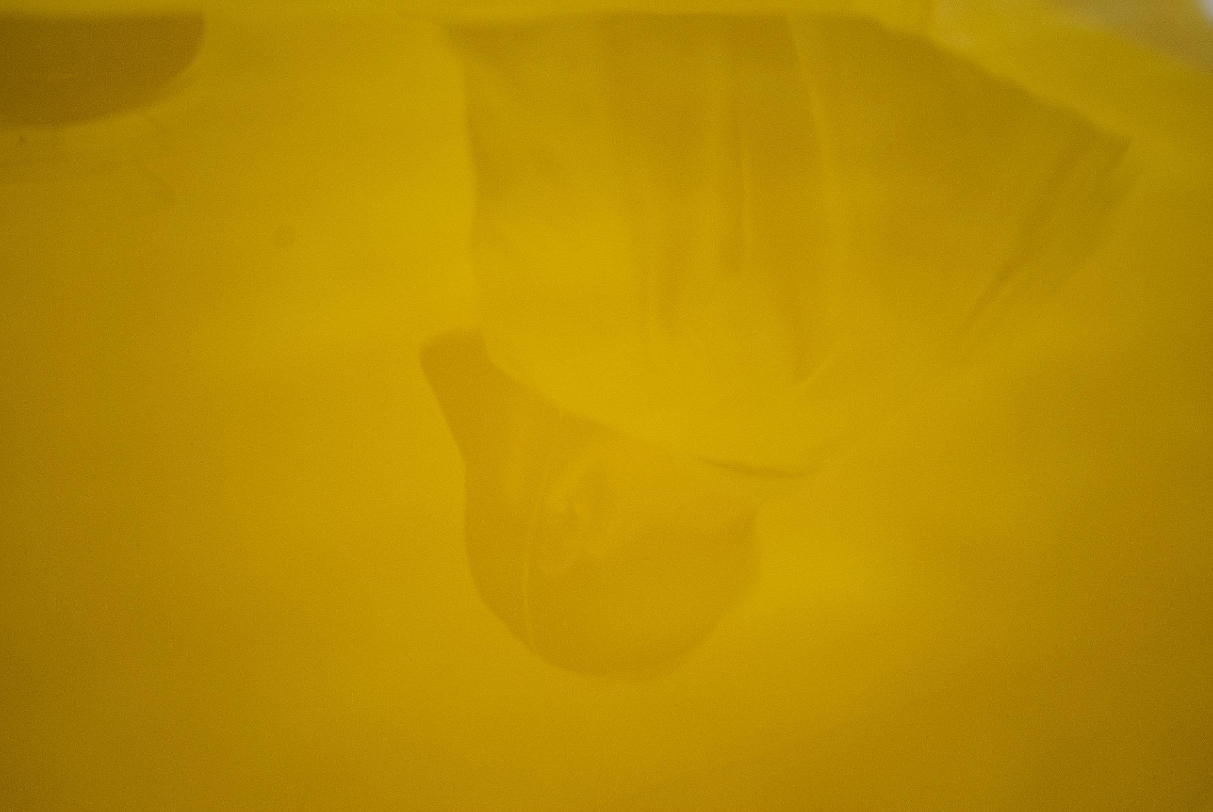 Lab Reflection.jpg