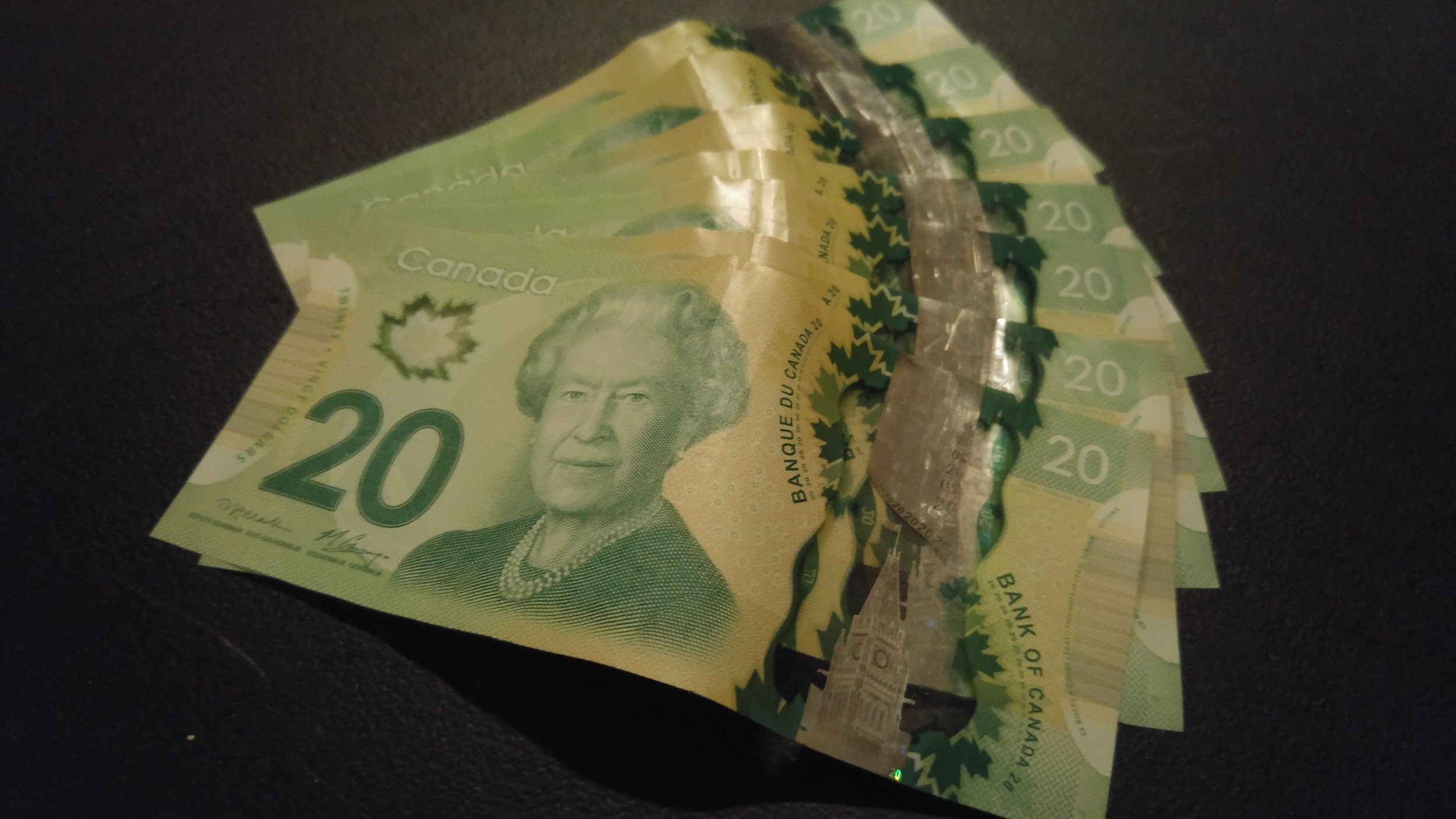 Money. With this guide, all this and more could be yours! (Logan Praznik/The Quill)