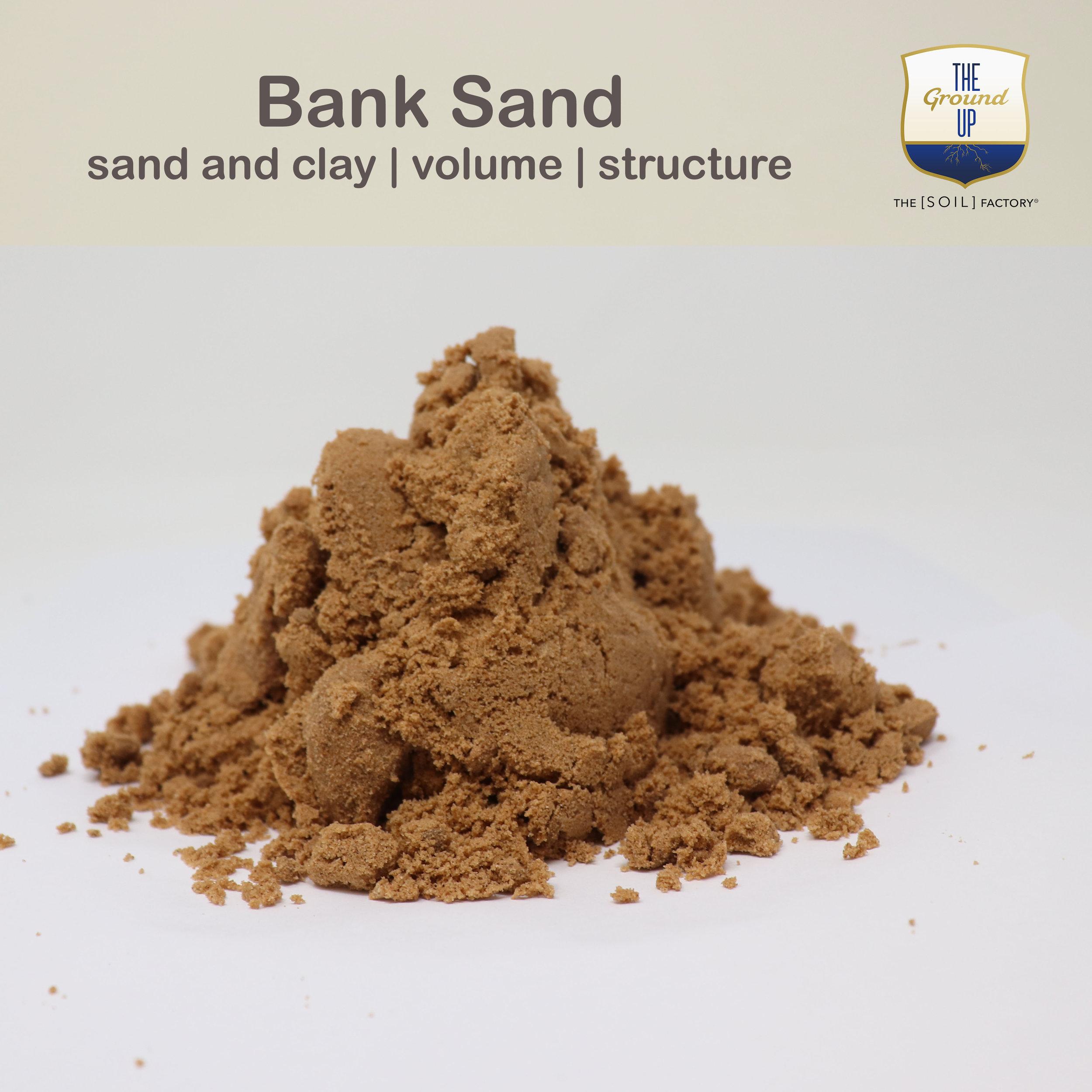 Bank.TSF.jpg