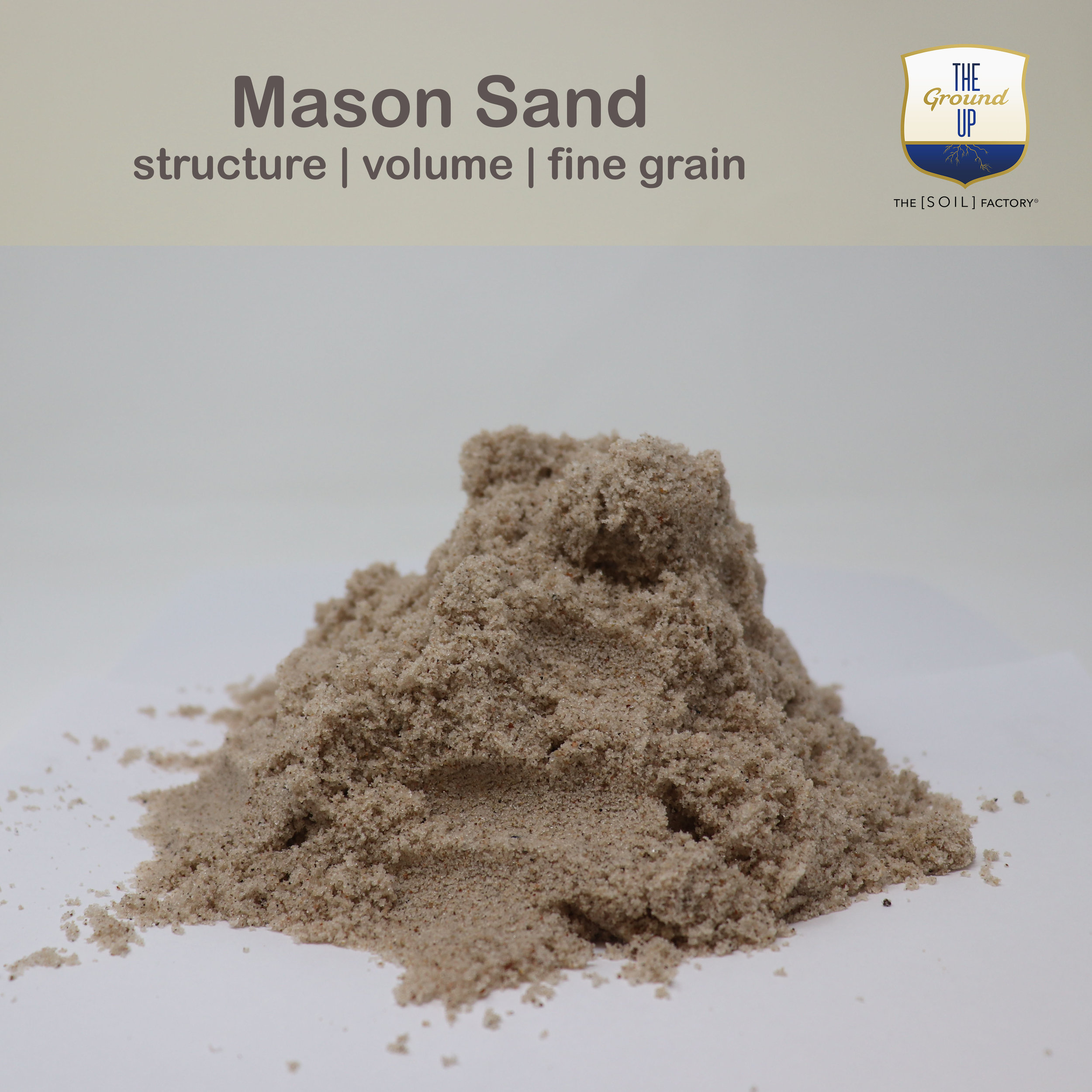 Mason.TSF.jpg