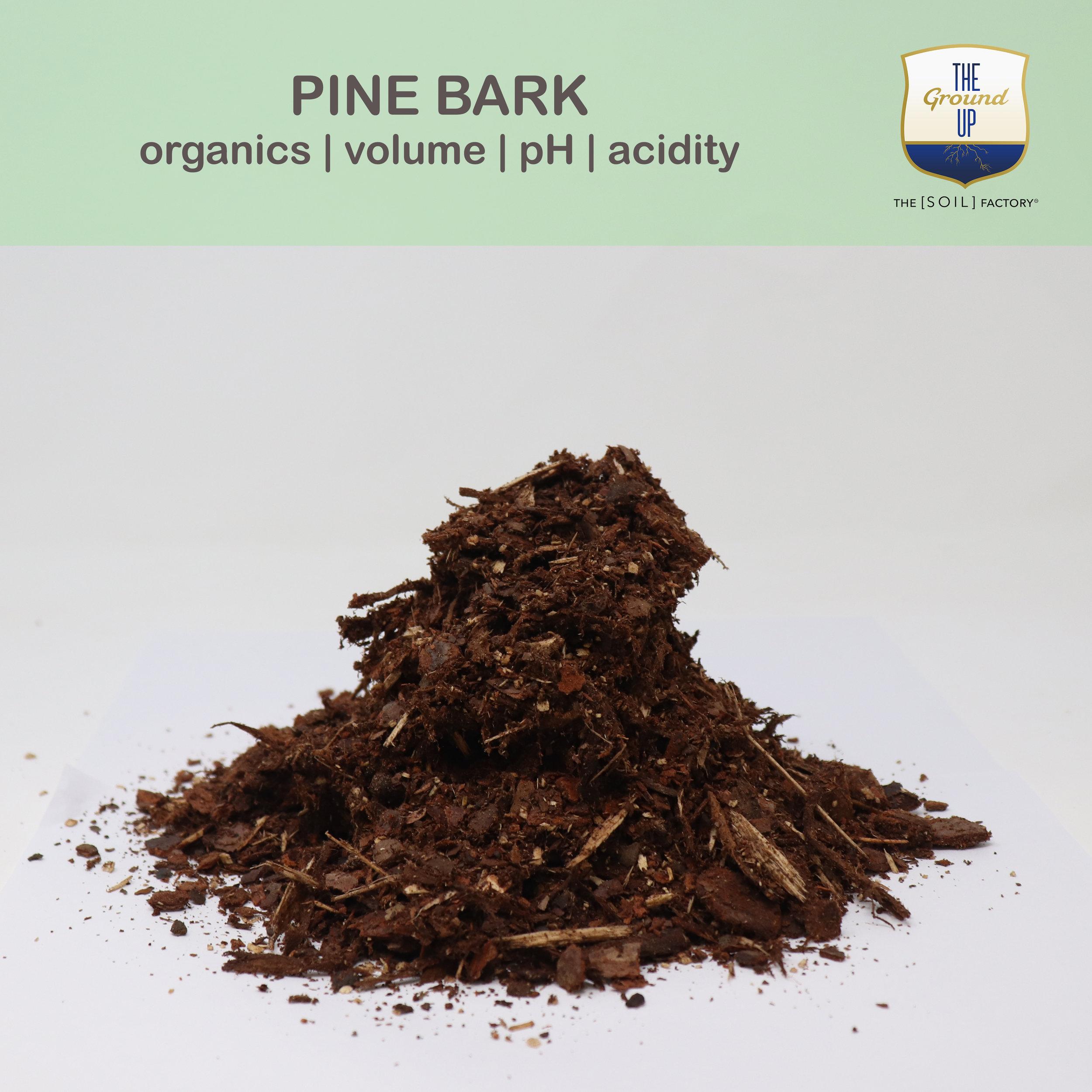 PineBark.jpg