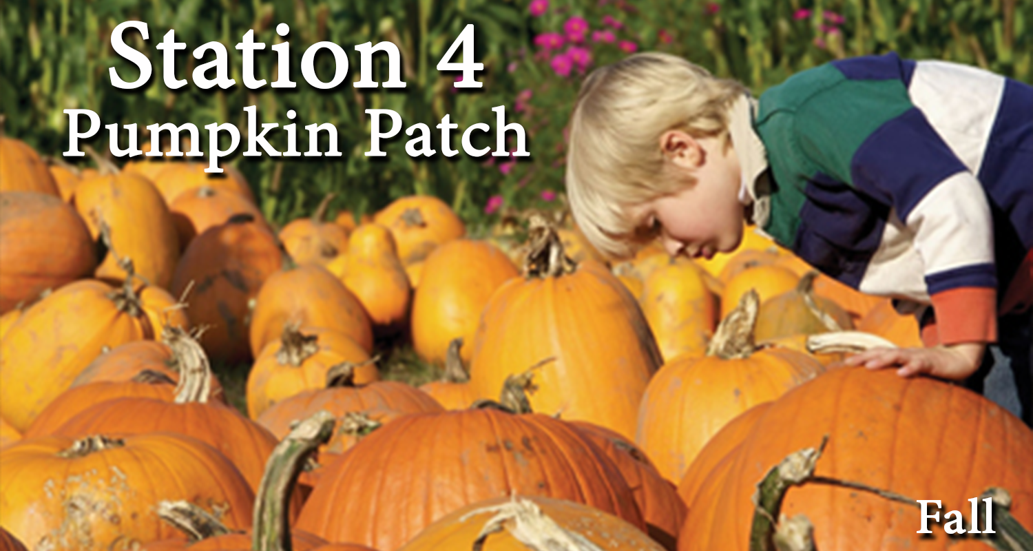 Station 4 Pumpkin Patch.png