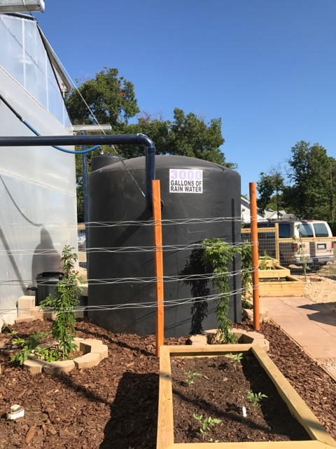 The catchment system captures 700 gallons of water for every inch of rain that falls on the roof of the 1200 SF greenhouse