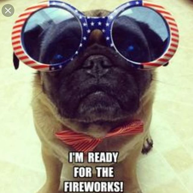 Happy 4th of July from @pawsitivelylb to your family!!!! Be safe and CBD your pet if they get scared of fireworks! We will be closed tomorrow,  the 4th and will reopen at 11am Friday the 5th! Thank you and enjoy