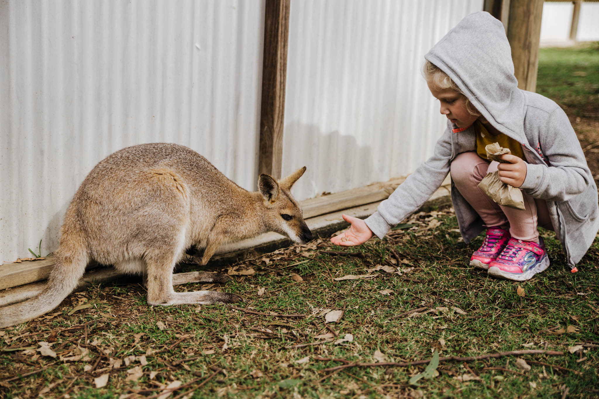 Australia-8158.jpg