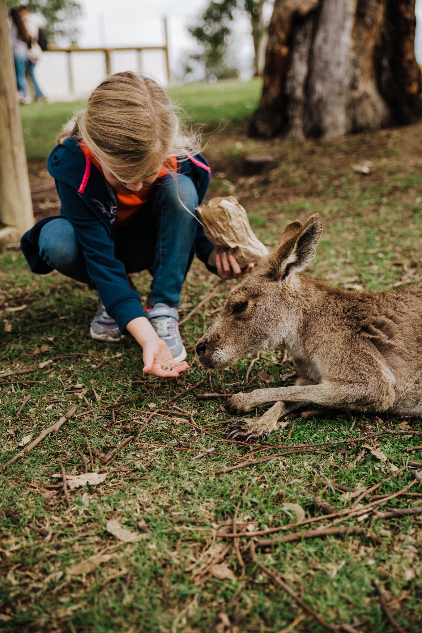 Australia-8160.jpg