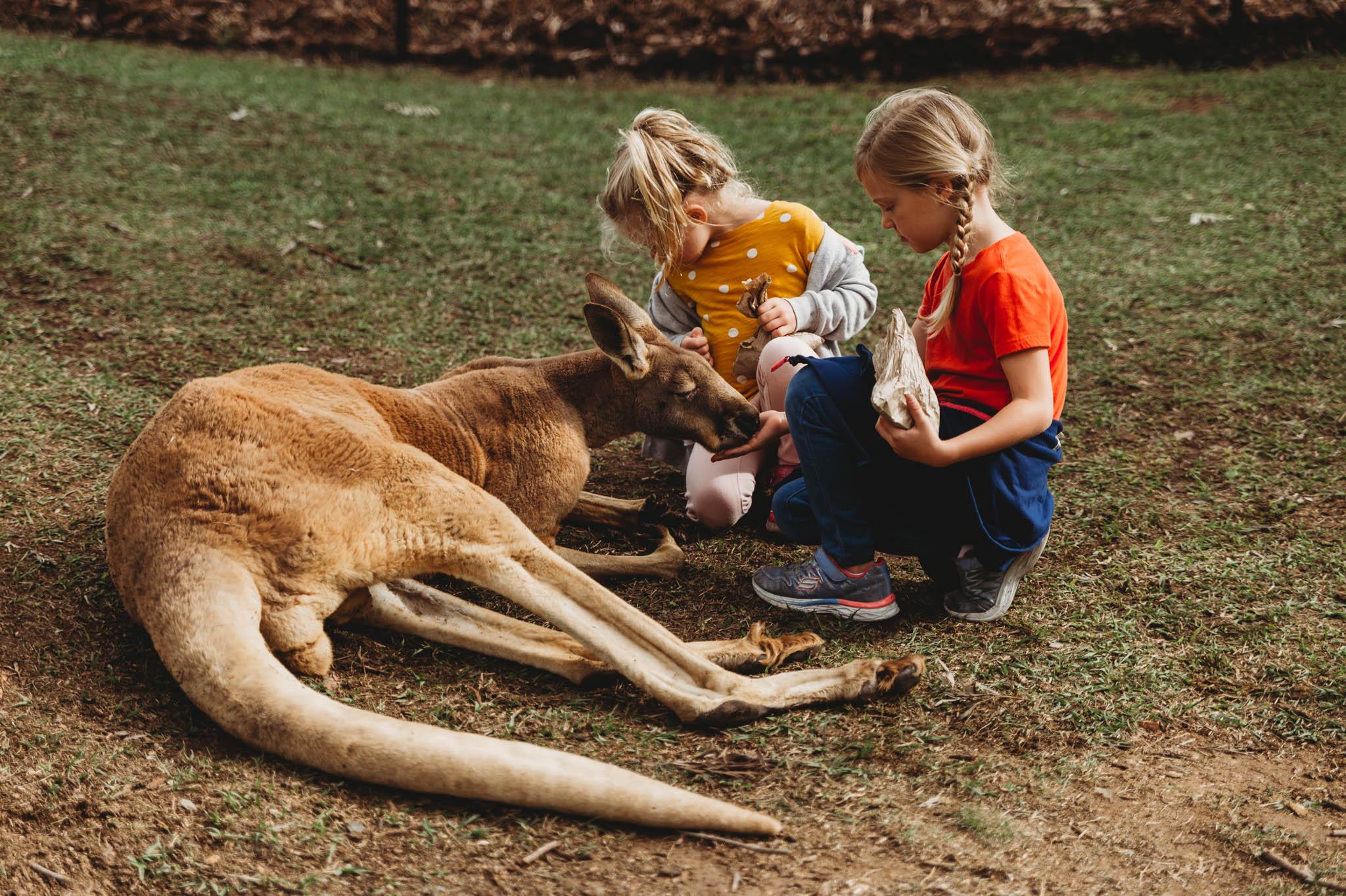 Australia-8192.jpg
