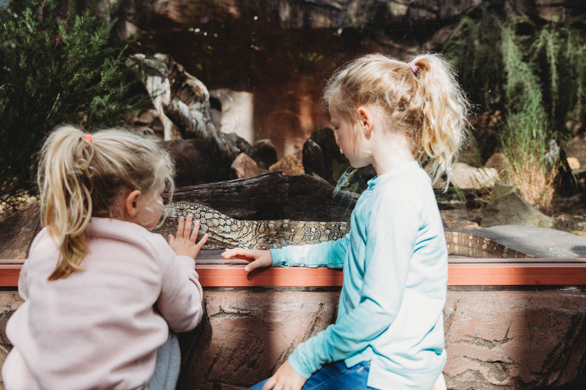 Australia Zoo-8287.jpg