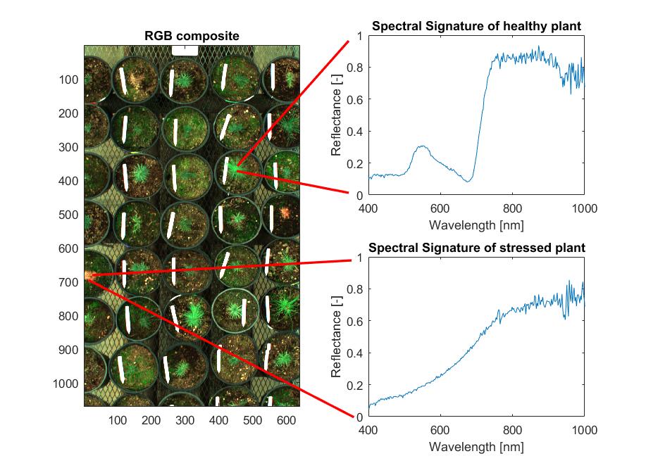 preliminary_data_spectralsignature.png