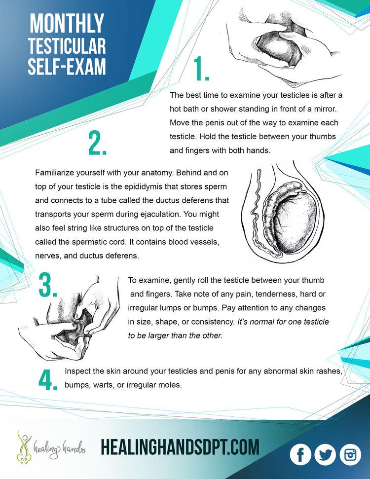 MOnthly Testicular Self-Exam
