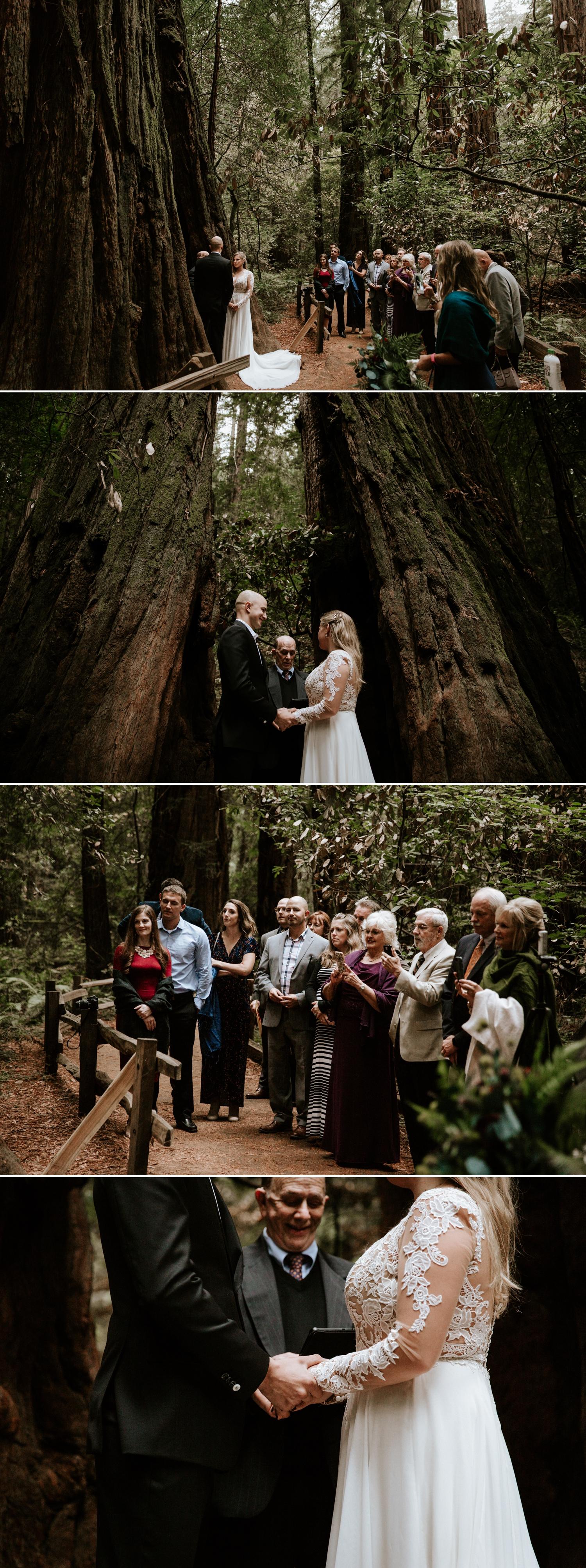 hannah-nick-intimate-muir-woods-wedding-19.jpg