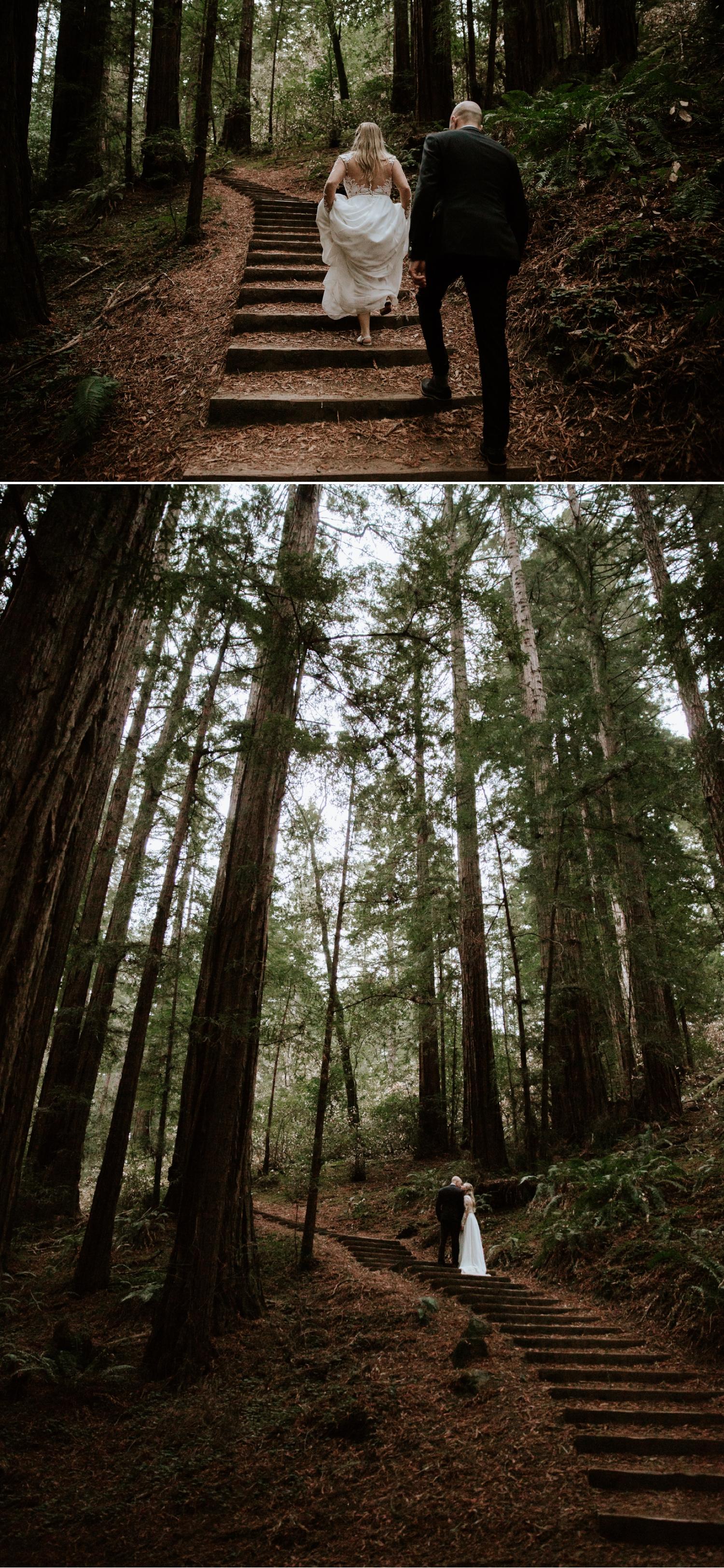 hannah-nick-intimate-muir-woods-wedding-31.jpg