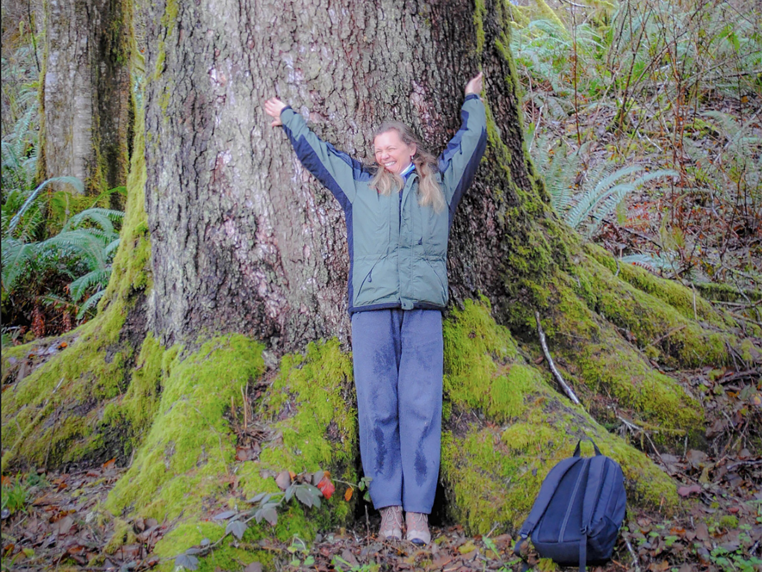 Laurie-Nelson_Old-Growth-Rainforest.jpg