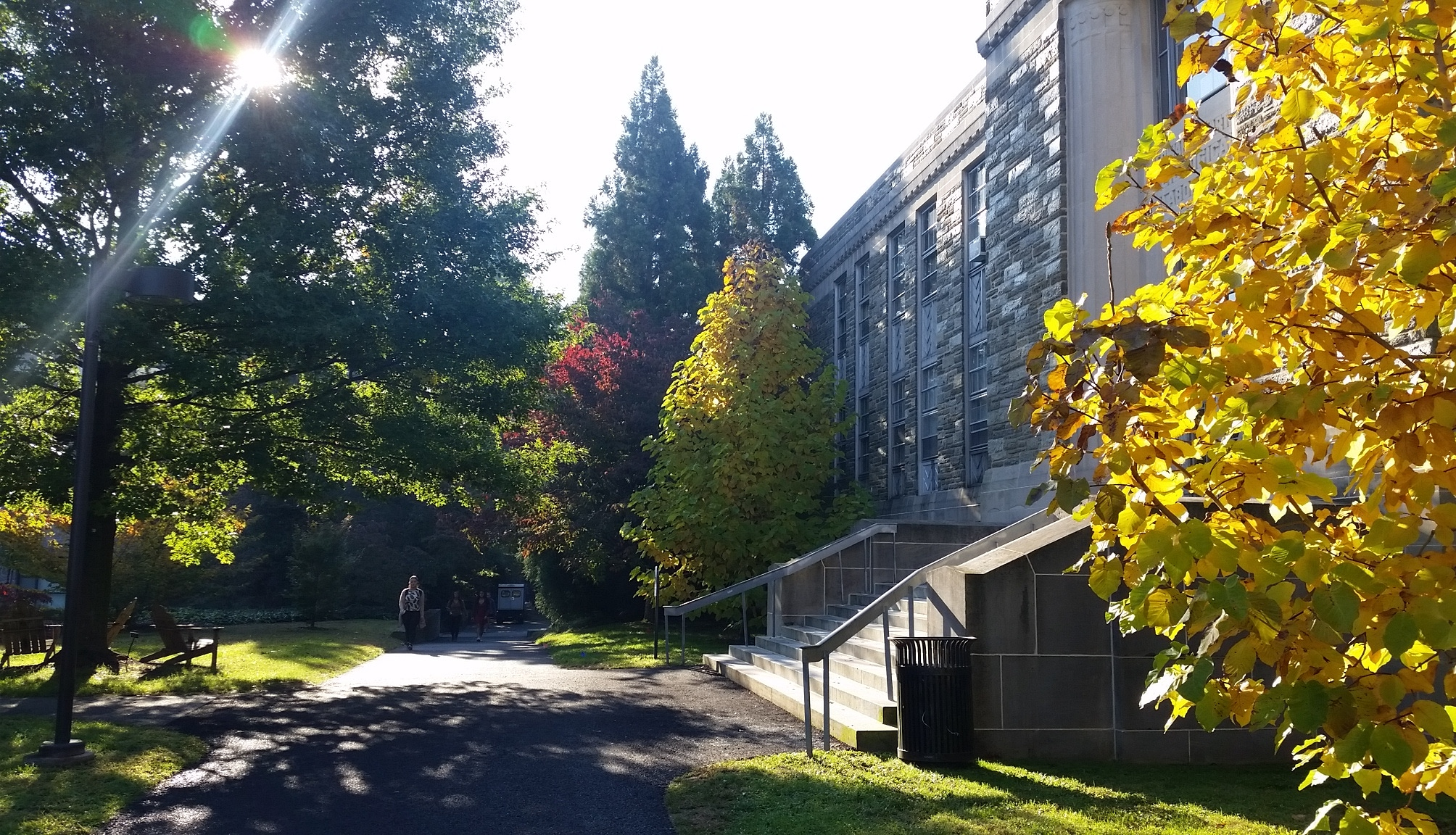 I will make extensive use of Swarthmore College's Crum Woods for Conservation Biology laboratory activities.