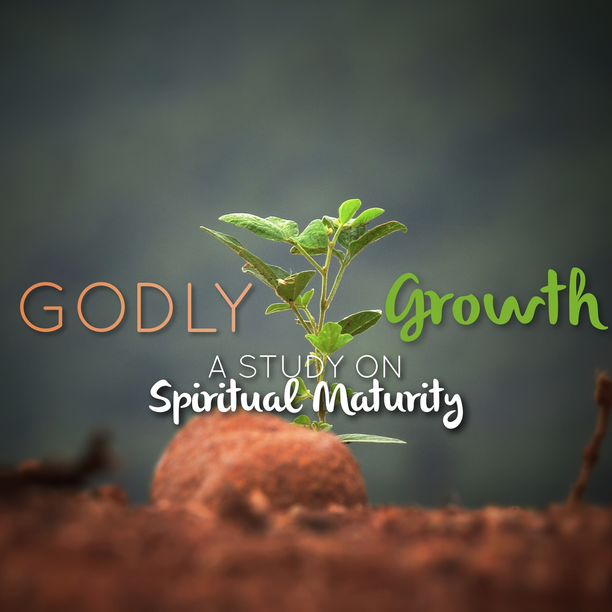 Godly Growth