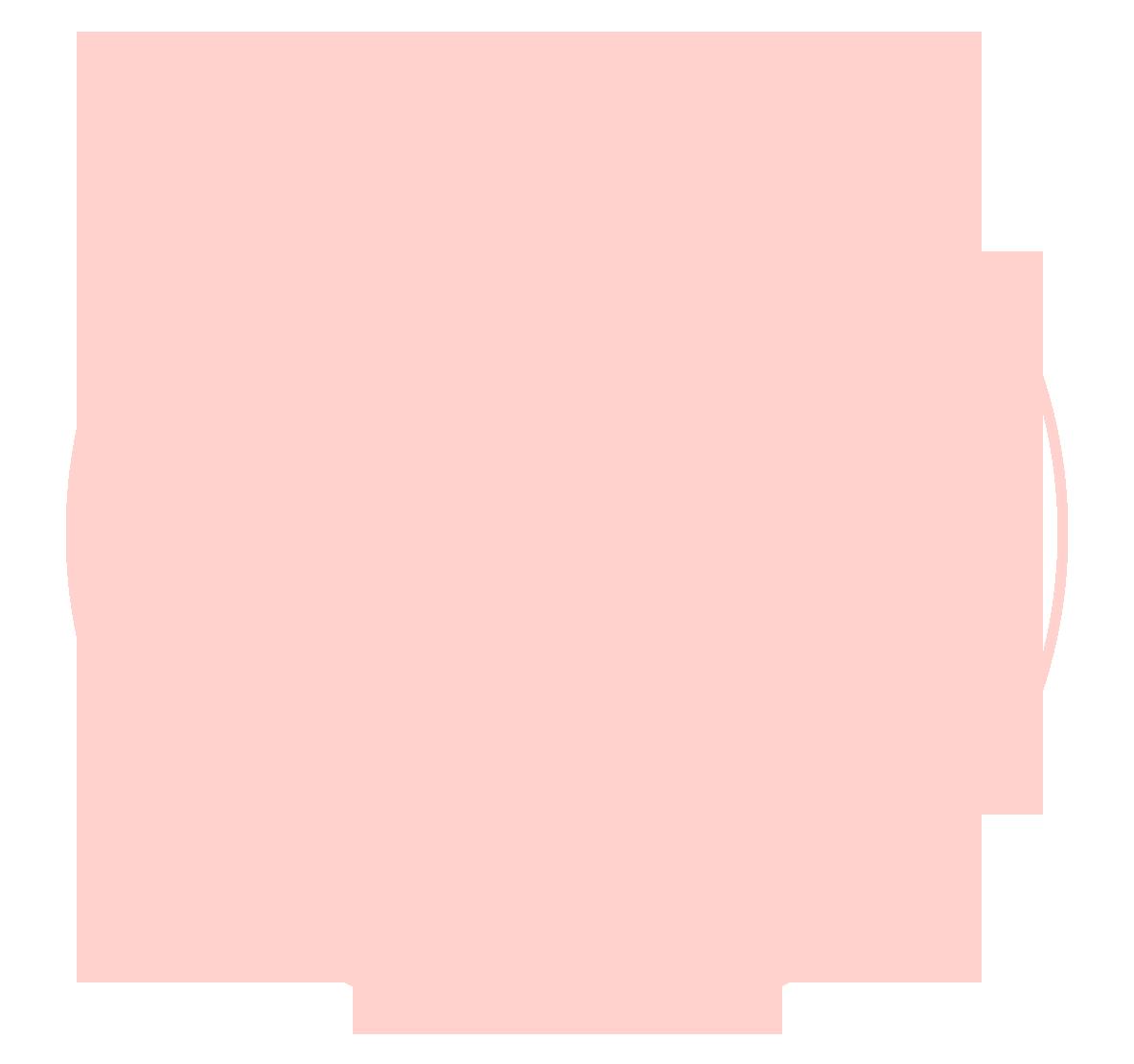 anoel-logo.png