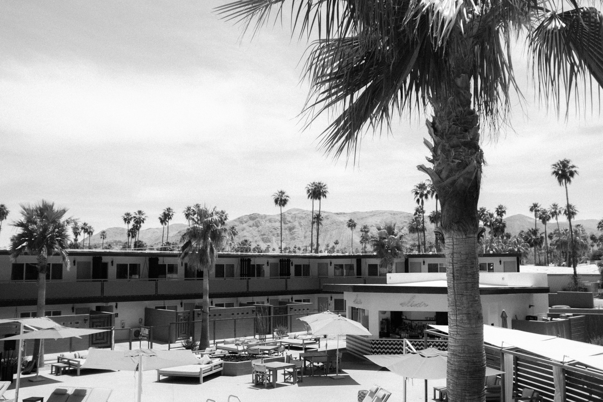 170422 Coachella 17 w2 1623.jpg