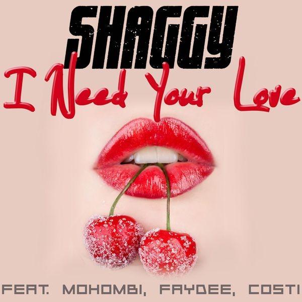 114. Shaggy - I Need Your Love.jpg